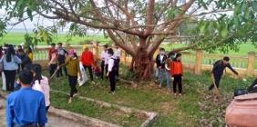 Tổ chức lao động tình nguyện và lễ kết nạp trao thẻ đoàn viên tại Khu tưởng niệm Bàu Bàng
